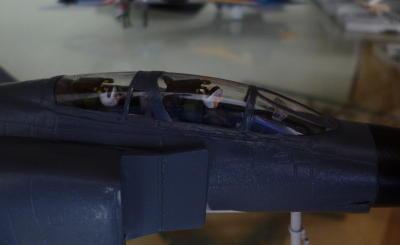 cockpit section